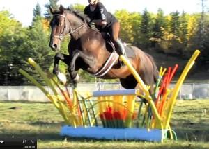 chi jump